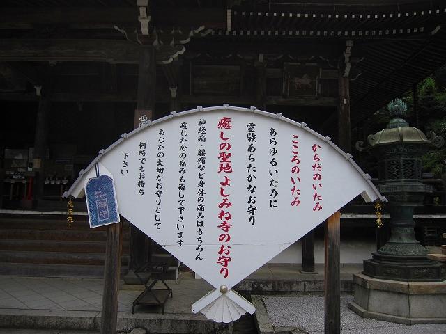 西山宮門跡『善峰寺』は日本一の松(天然記念物)_e0237645_952511.jpg