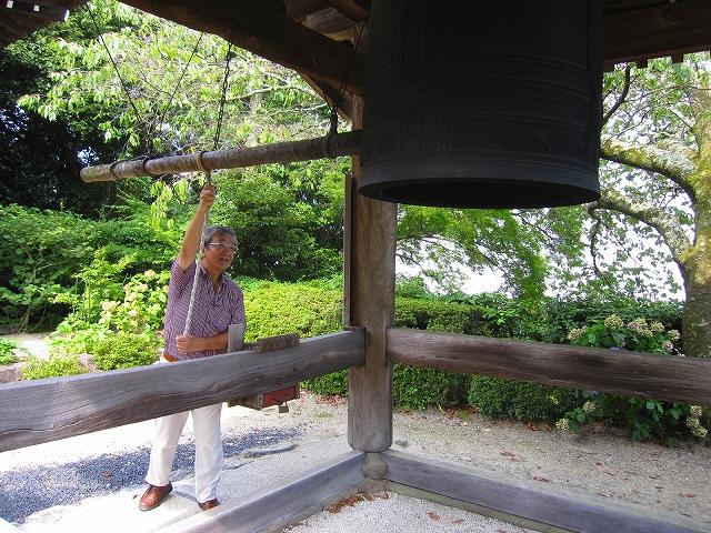 西山宮門跡『善峰寺』は日本一の松(天然記念物)_e0237645_954295.jpg