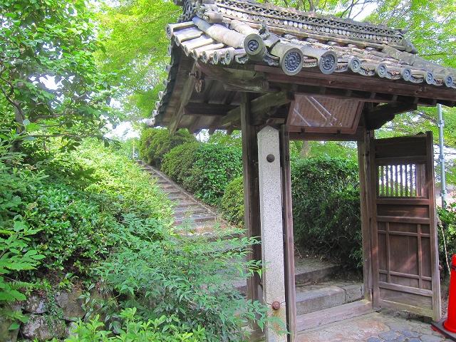 西山宮門跡『善峰寺』は日本一の松(天然記念物)_e0237645_99566.jpg