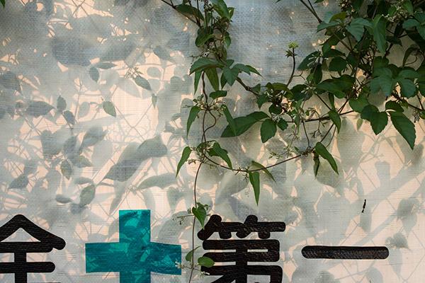 2013/08/12 中野散歩:その2_b0171364_1118811.jpg