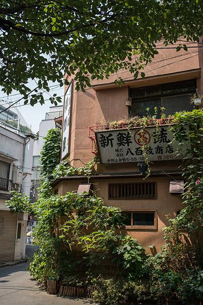 2013/08/12 中野散歩:その1_b0171364_116528.jpg