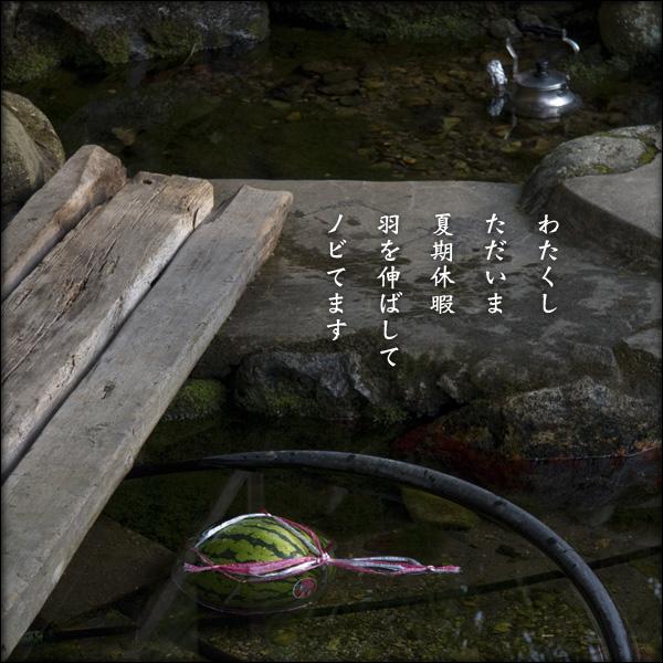 a0197968_2113219.jpg