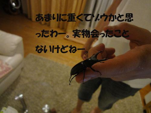 b0204977_2044219.jpg