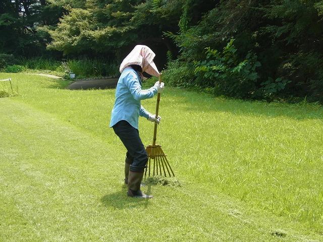 草地の草刈り(機械刈り)とエアレーション、目土まき_b0049307_16472923.jpg