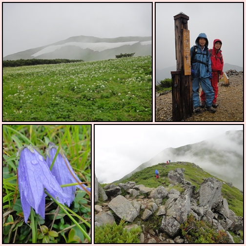 夏山遠征~黒部五郎岳へ_e0164643_11501552.jpg
