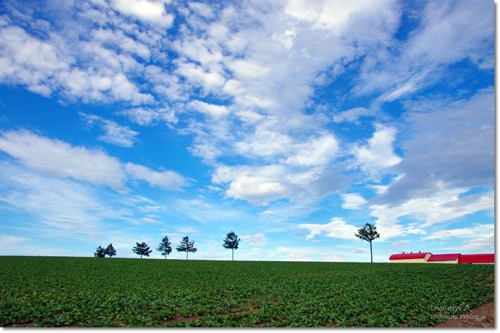 メルヘンの丘と呼人浦でキャンプ!_f0179404_19544714.jpg