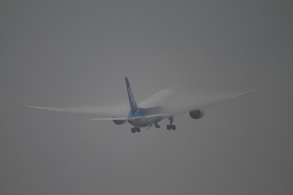 曇天 湿度高し。_b0044115_7581267.jpg