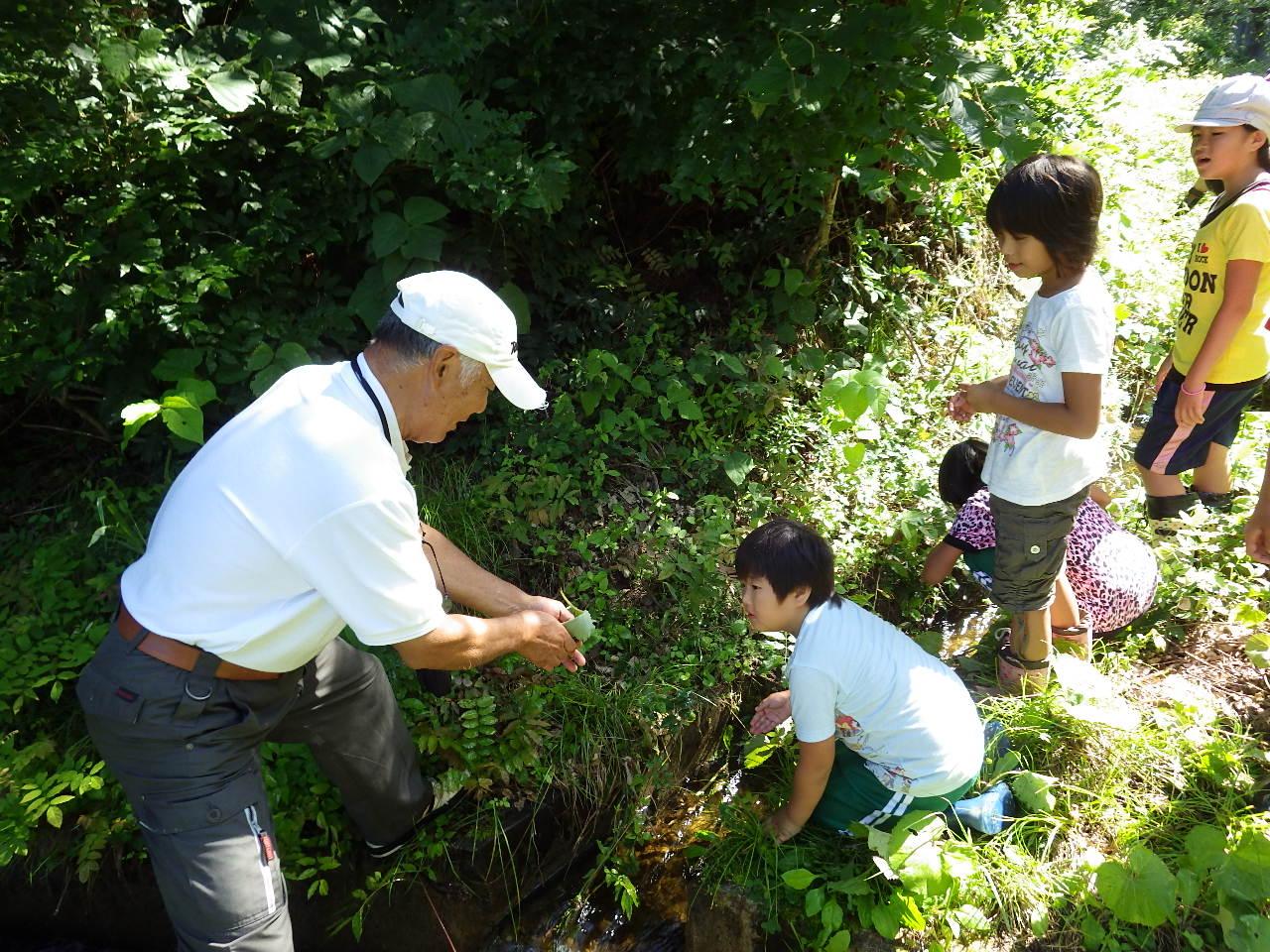 田部環境保全会での水質調査!_a0256619_18382881.jpg