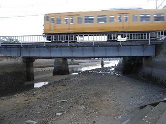 そして、呉の堺川でもハクセンシオマネキを発見した!_e0175370_8403695.jpg