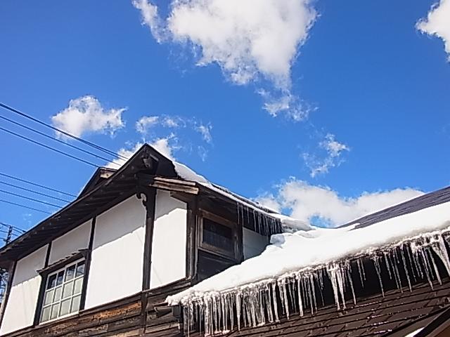夏!オ~レンジ~!_b0207642_1674777.jpg