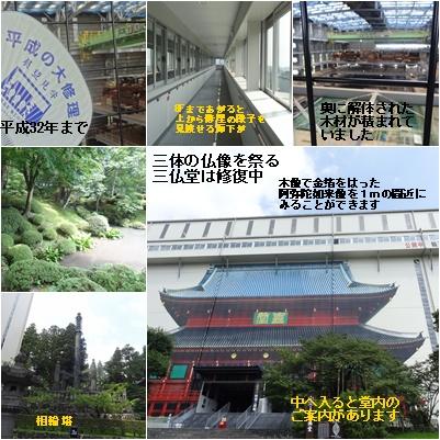 富士山と日光の旅 その3_a0084343_1741982.jpg