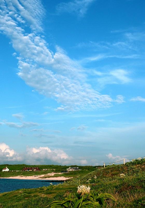 角島の夏_d0074828_2158360.jpg