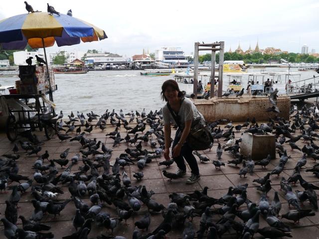 タイへ行く。⑩ ~奇界遺産シリラート死体博物館~_f0232060_16484745.jpg