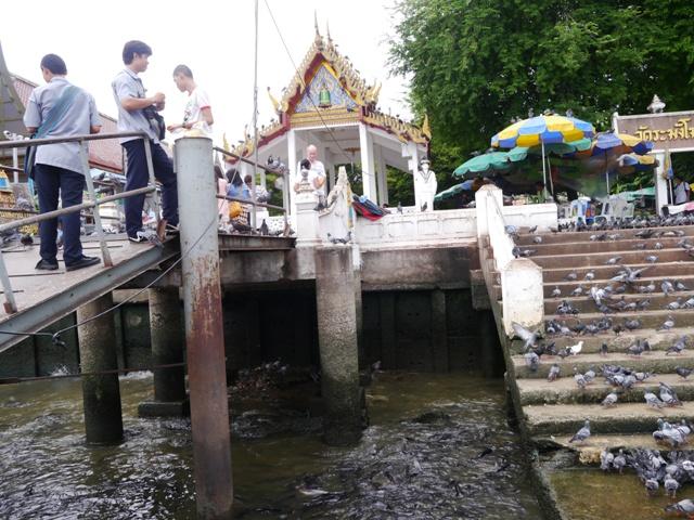 タイへ行く。⑩ ~奇界遺産シリラート死体博物館~_f0232060_16523477.jpg