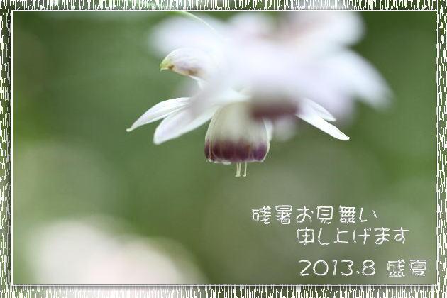 f0164592_7215119.jpg
