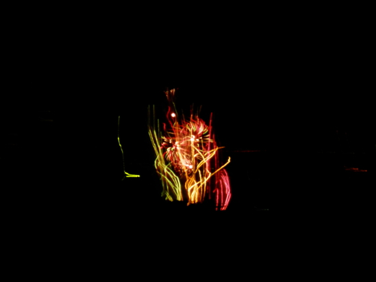 今年3回目の「花火大会」で。_a0125419_21103925.jpg