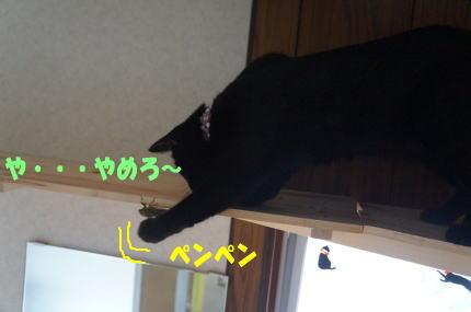 d0013645_16363582.jpg