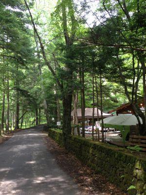 軽井沢の夏休み後半_a0163160_1782945.jpg