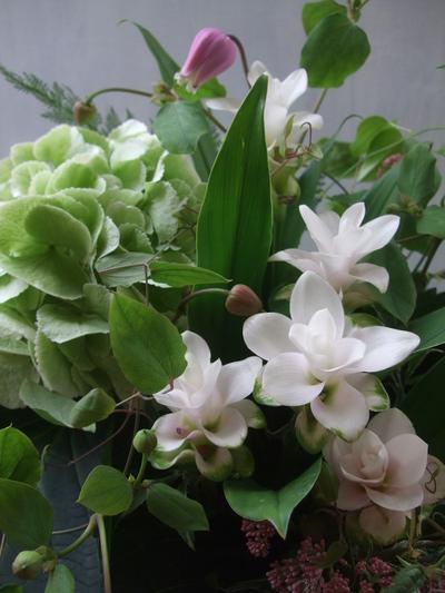 オークリーフ(秋色紫陽花とクルクマのアレンジメント)_f0049672_12585375.jpg