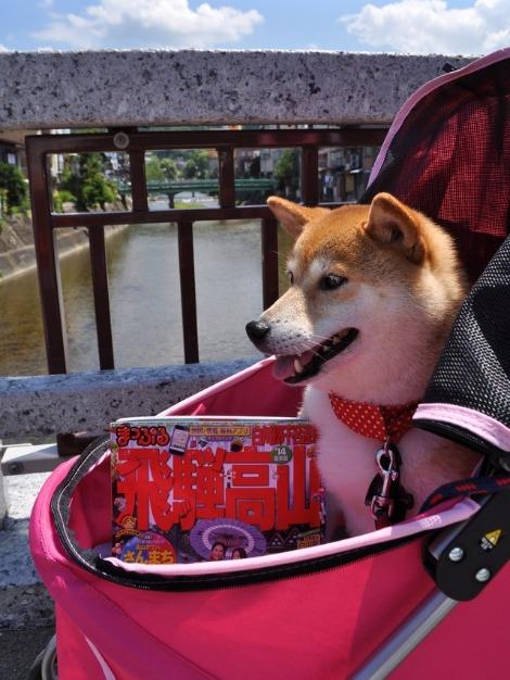 戸隠キャンプ2013① かぼちゃん高山に行く_a0126590_1782630.jpg