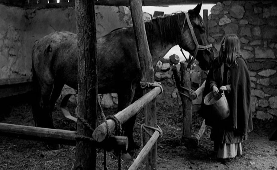 ニーチェの馬 シネマの世界<第205話> : 心の時空