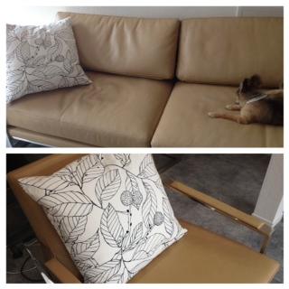 IKEAでクッションを買ってきました_f0243509_10255579.jpg