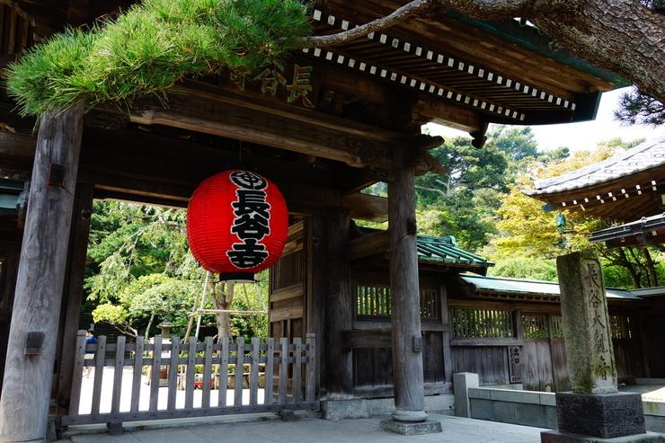 さて御霊神社のすぐ近くにある、観光客で賑わうここは鎌倉 長谷寺です!  「趣味はウォーキングでは