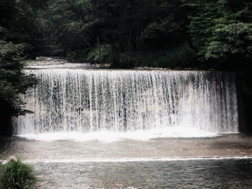 四万川より、残暑お見舞い申し上げます。_f0236260_1933844.jpg