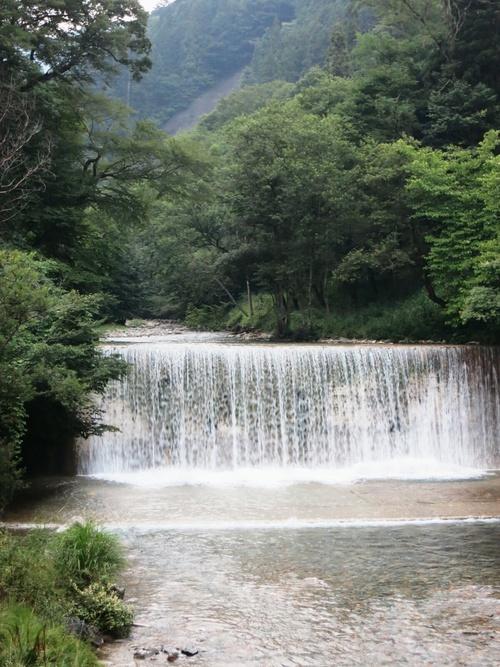 四万川より、残暑お見舞い申し上げます。_f0236260_19345766.jpg