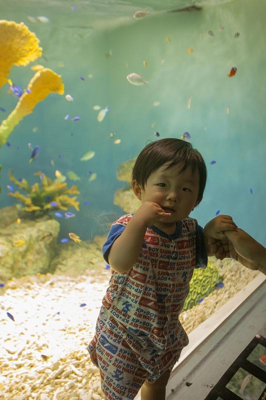 おたる水族館_f0281095_23121459.jpg