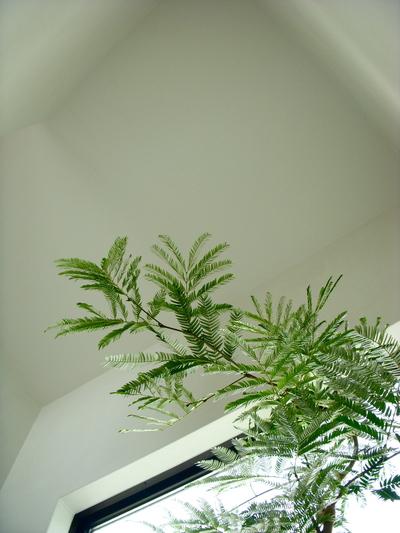 ステキなお家。。。_a0229658_177838.jpg