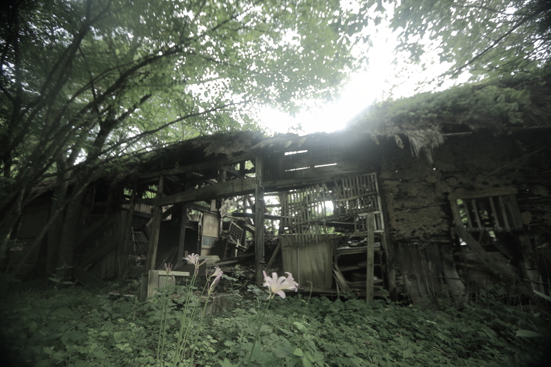 「遠野物語25(片門松)」_f0075075_16393895.jpg