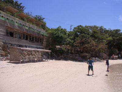 沖縄、今年も、蝉の鳴き声が聞こえない_a0122098_10134020.jpg