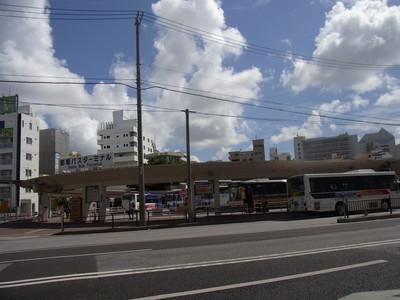 沖縄、今年も、蝉の鳴き声が聞こえない_a0122098_10201332.jpg