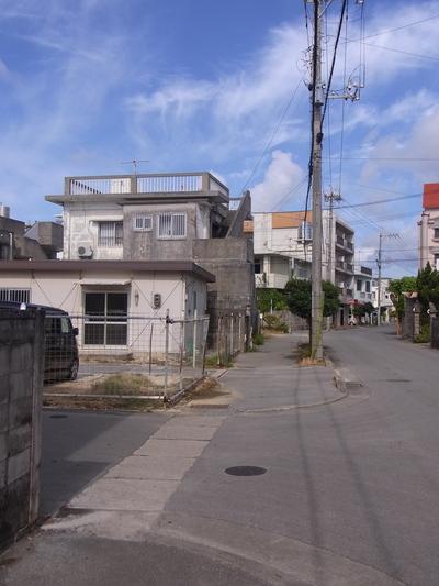 沖縄、今年も、蝉の鳴き声が聞こえない_a0122098_1022313.jpg