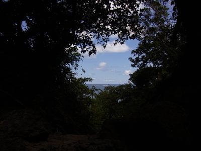 沖縄、今年も、蝉の鳴き声が聞こえない_a0122098_109385.jpg