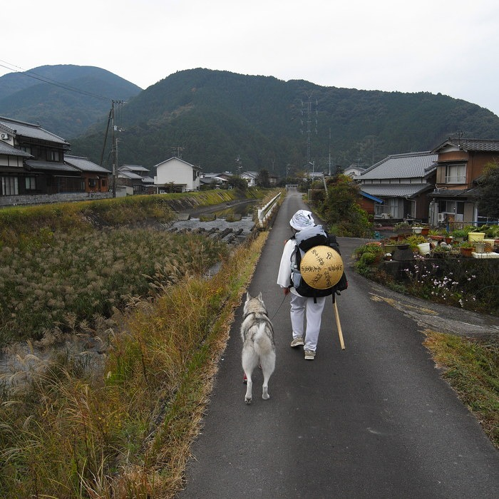 Memory of the second pilgrimage with husky HANA_c0049299_9454388.jpg