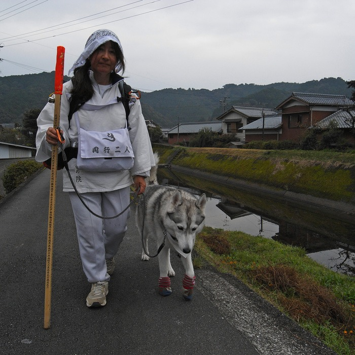 Memory of the second pilgrimage with husky HANA_c0049299_946937.jpg