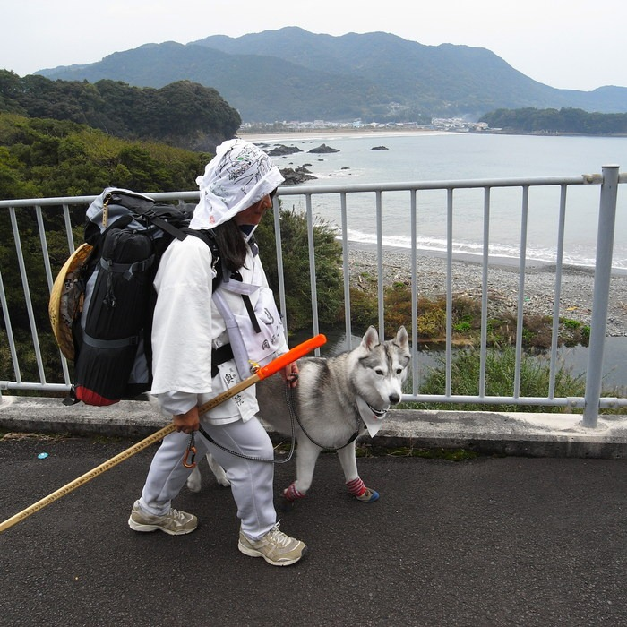 Memory of the second pilgrimage with husky HANA_c0049299_9502532.jpg