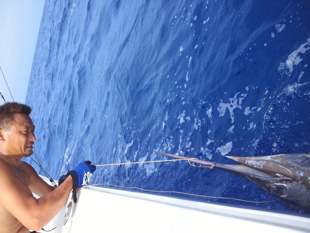 Congratulation on the 100 Marlin !! to Boboss 【カジキ・マグロ トローリング】_f0009039_9213320.jpg