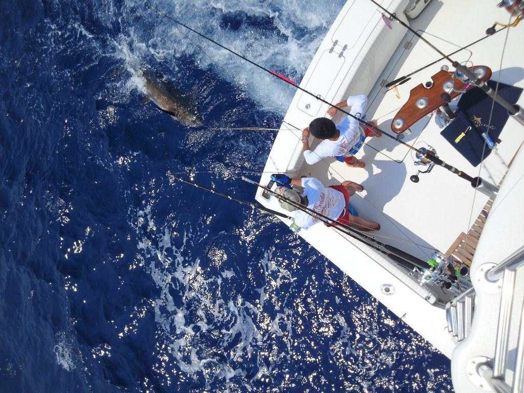 Congratulation on the 100 Marlin !! to Boboss 【カジキ・マグロ トローリング】_f0009039_921484.jpg