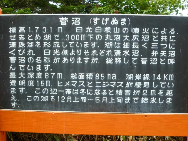 b0203758_17225914.jpg