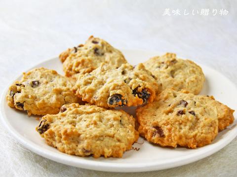 チョコチップクッキー_a0216871_10205443.jpg