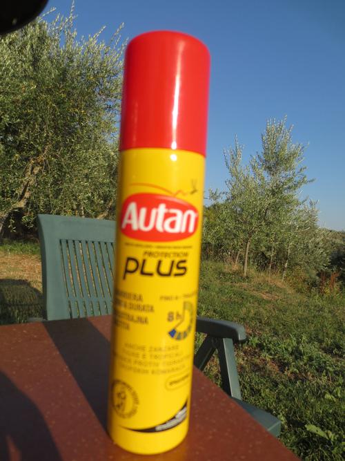 山の家の極楽時間とそして蚊との戦い!!_c0179785_1716735.jpg