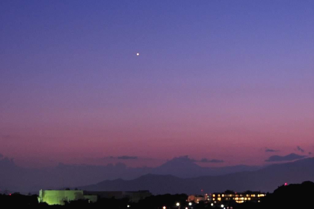 ハス花上でホバ/??のシギチ/MFの虫達/ススキ/富士山に金星/十三夜の月_b0024798_13112945.jpg