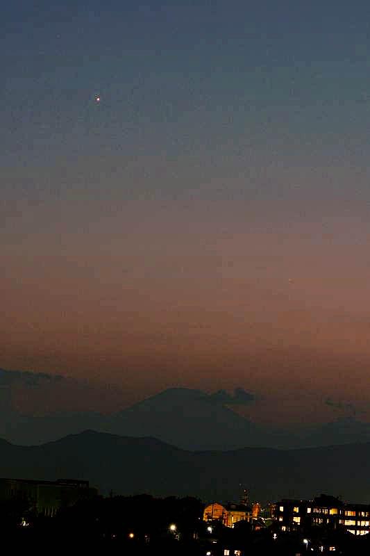 ハス花上でホバ/??のシギチ/MFの虫達/ススキ/富士山に金星/十三夜の月_b0024798_1395469.jpg
