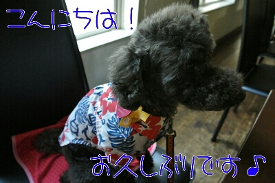 b0236618_14202442.jpg