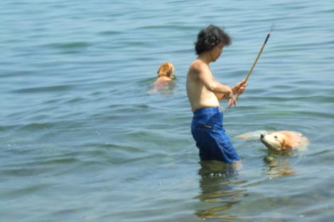 初海水浴_c0236632_7344992.jpg