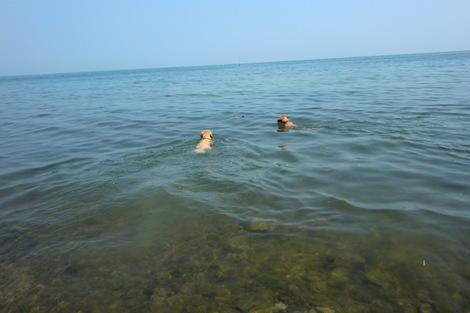 初海水浴_c0236632_7421374.jpg