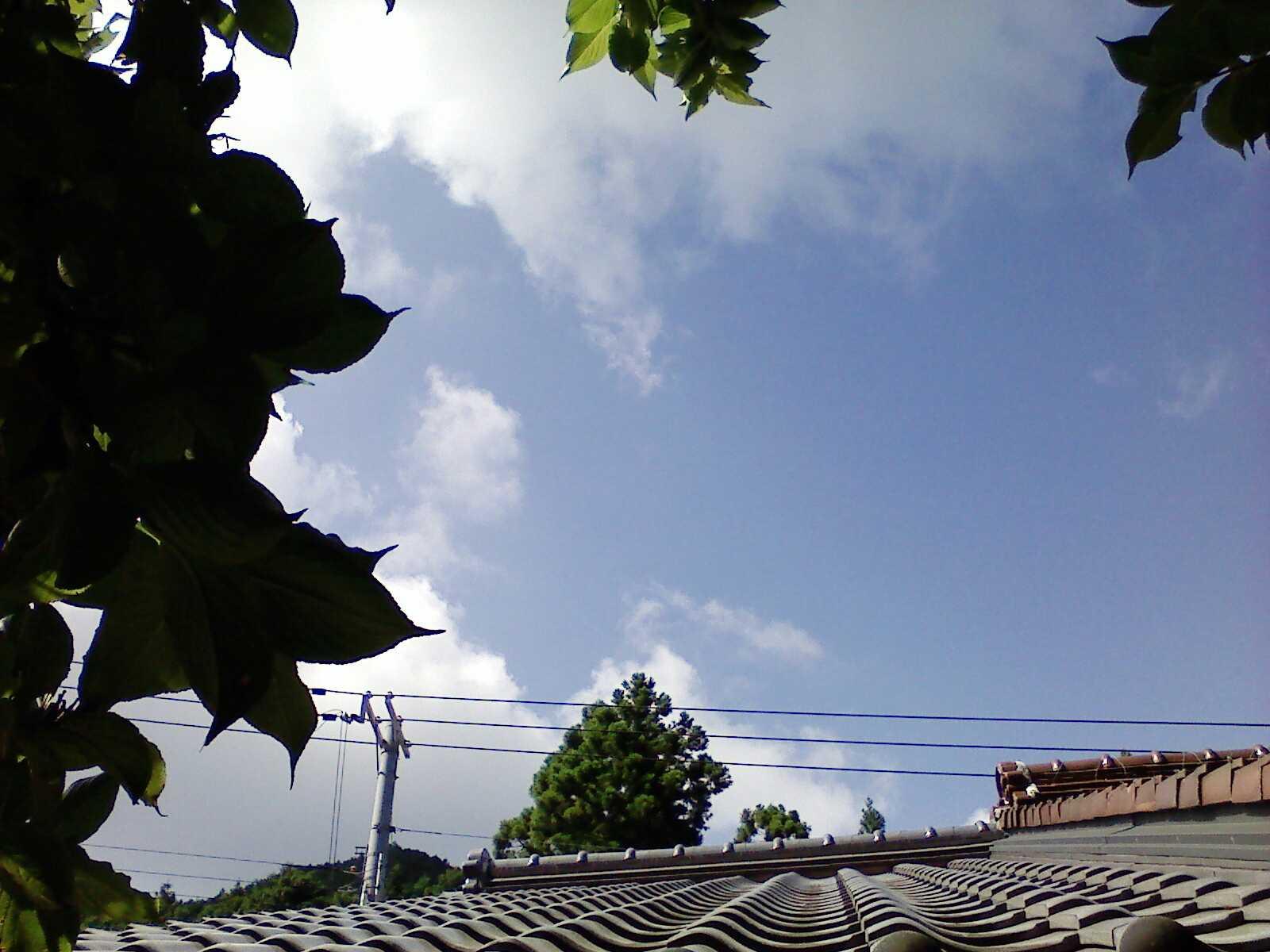 今夏に思ふこと_c0010936_0592159.jpg